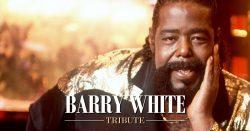 Barry White Tribute Dining Entertainment at El Oceano Restaurant between Marbella and La Cala de Mijas